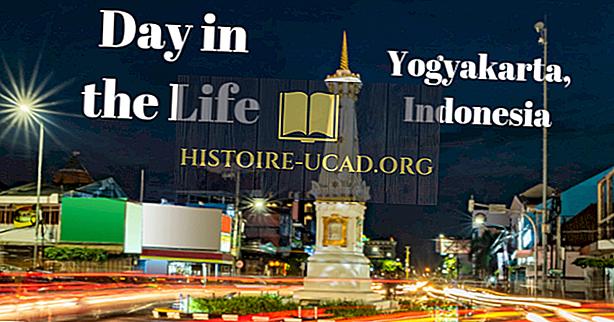 dia na vida - Vivendo na Indonésia