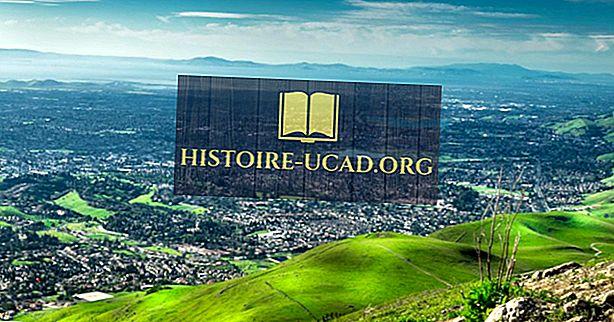 O que é a ideologia californiana?