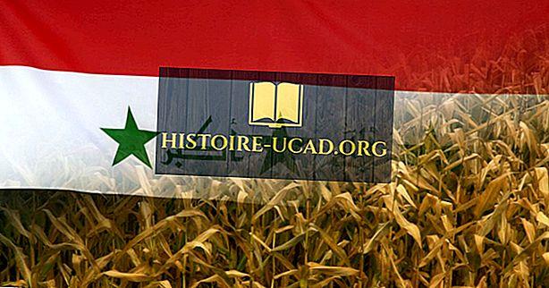 Le saviez-vous - Que s'est-il passé lors de la catastrophe de grain de poison en Irak en 1971?