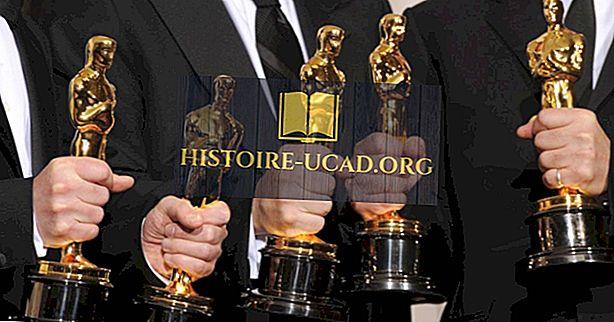věděl jsi - Jaké jsou ceny Akademie?