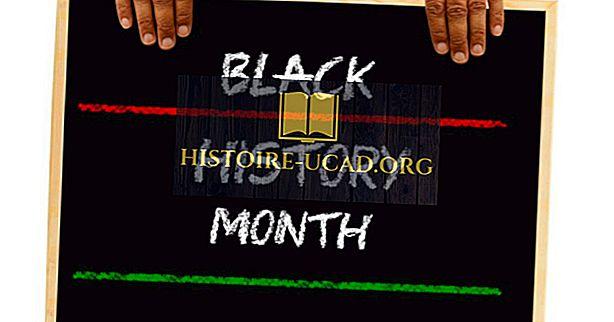 vidste du - Hvornår er Black History Month?