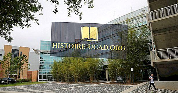ABD'de kaç tane kolej var?