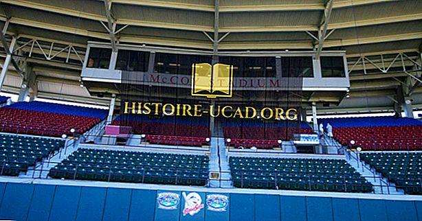 vidste du - Det længste baseballspil nogensinde spillet