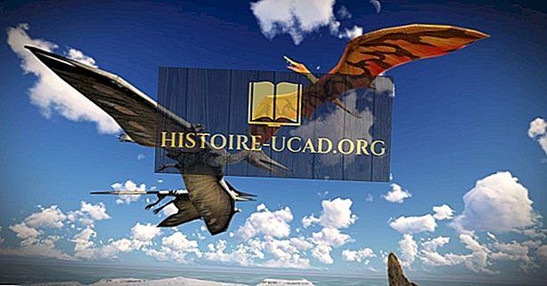Kas pterodaktüülid on dinosaurused?