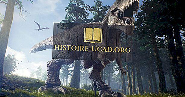vidste du - Tyrannosaurus Rex Fakta: Uddøde Dyr af Verden