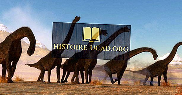 Brachiosaurus fakti: izmiruši pasaules dzīvnieki