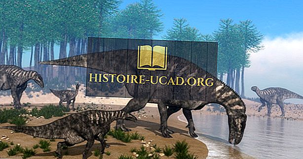 tudtad - Iguanodon tények: a világ kihalt állatai