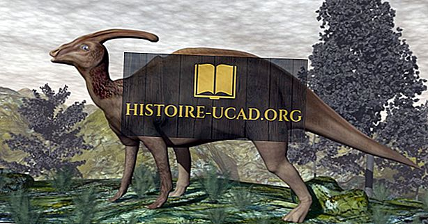 Le saviez-vous - Faits Parasaurolophus: Animaux disparus du monde