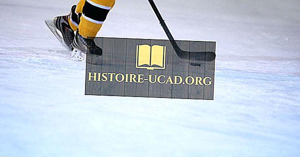 Wusstest du - Olympische Winterspiele: Eishockey