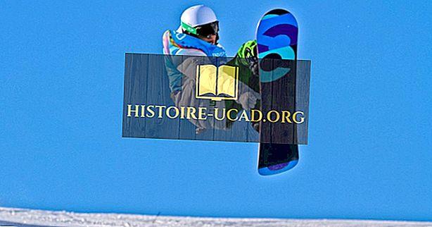 Pertandingan Olimpiade Musim Dingin: Snowboarding