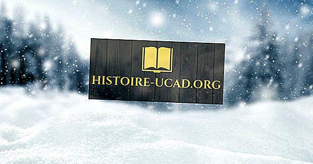 Wusstest du - Wie entsteht Schnee?