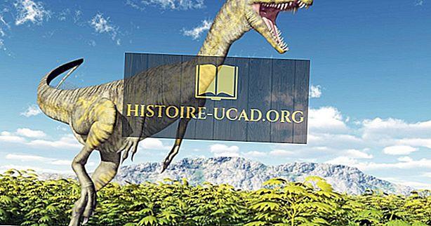 Дилофозавр: вымершие животные мира