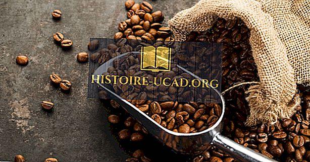 ekonomika - Top kafijas ražotājvalstis