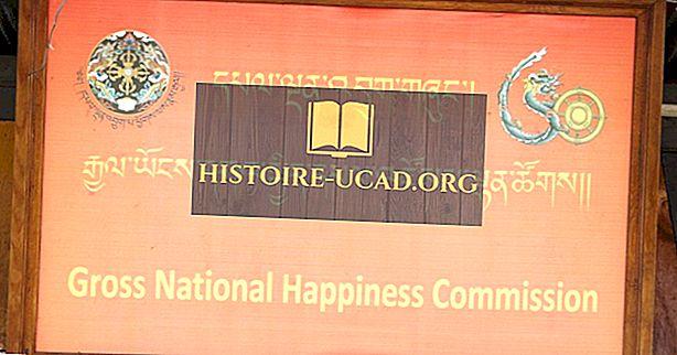 Što je bruto nacionalna sreća?