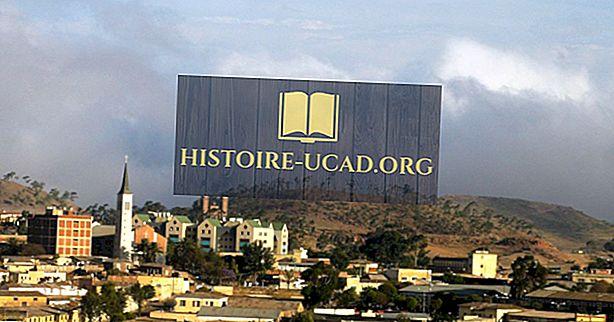 Kokios yra didžiausios pramonės šakos Eritrėjoje?
