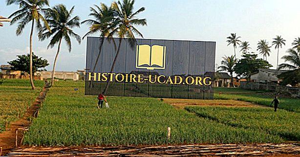 Koji su glavni prirodni resursi u Beninu?