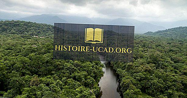 Kaj so glavni naravni viri Brazilije?