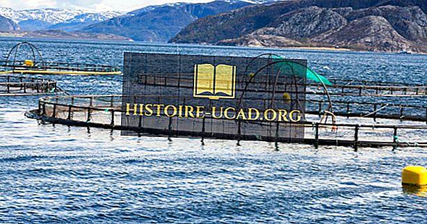 Các ngành công nghiệp lớn nhất ở Na Uy là gì?