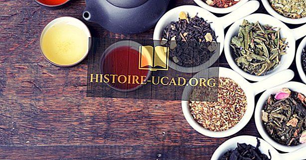 ekonomika - Pasaulē top 10 tējas ražošanas valstis