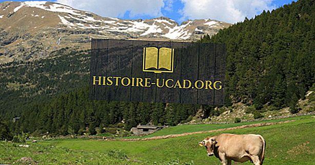 Hvad er de største naturressourcer i Andorra?