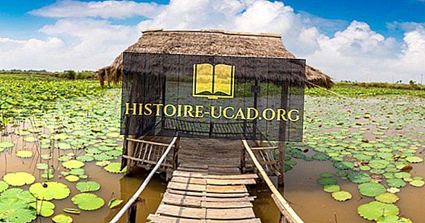 Was sind die wichtigsten natürlichen Ressourcen von Kambodscha?