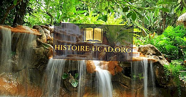Millised on Costa Rica peamised loodusvarad?