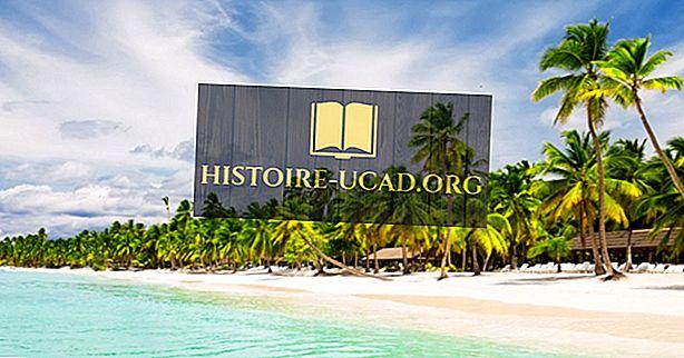 ما هي الموارد الطبيعية الرئيسية للجمهورية الدومينيكية؟