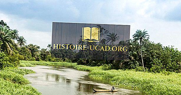 Какви са основните природни ресурси на Кот д'Ивоар?