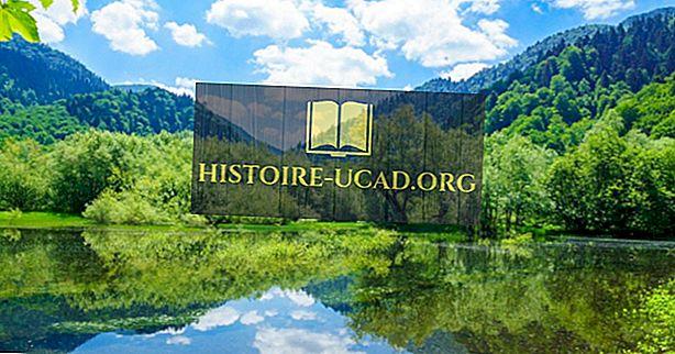 ما هي الموارد الطبيعية الرئيسية في الجبل الأسود؟