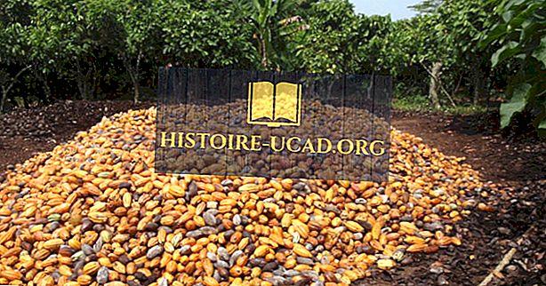 Care sunt cele mai mari industrii din Coasta de Fildeș?