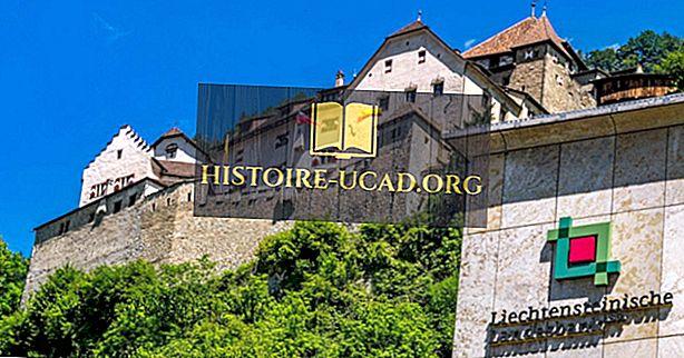 Kokios yra didžiausios pramonės šakos Lichtenšteine?