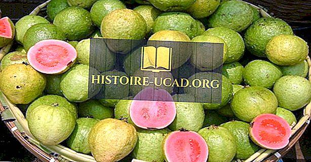 Top Guava produkující země na světě