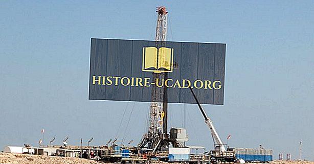 економија - Организација земаља извозница нафте (ОПЕЦ)