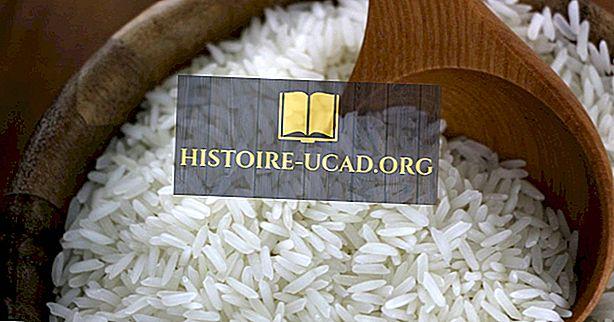 Οικονομικά - Οι 10 μεγαλύτεροι εισαγωγείς ρυζιού στον κόσμο