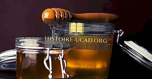 Principali esportatori di miele naturale