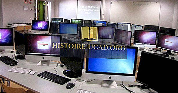 Eksporto ekonomikos skatinamos IRT prekių ir kompiuterinės įrangos