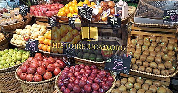 Mal İthalatına Göre En Çok Gıdayı İthalat Yapan Ülkeler
