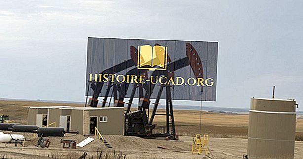 taloustiede - Kaikki öljyteollisuudesta