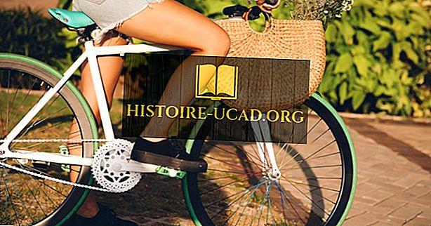 ekonomika - Vše o cyklistickém průmyslu