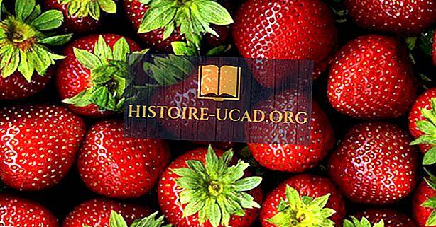 Länder som producerar de flesta jordgubbar