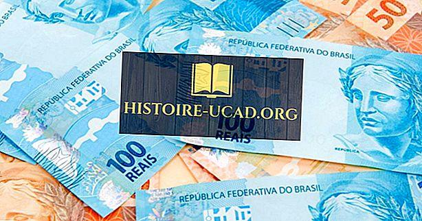 Valutaerne i Sydamerika