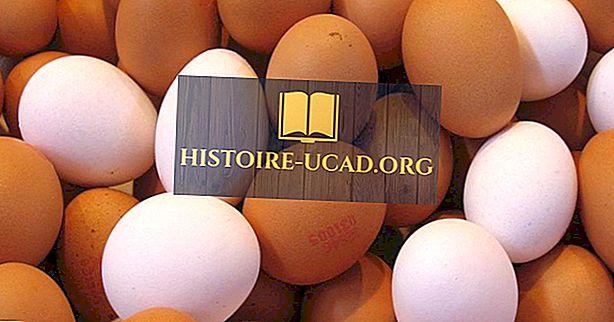 Provincias canadienses por el número de huevos producidos