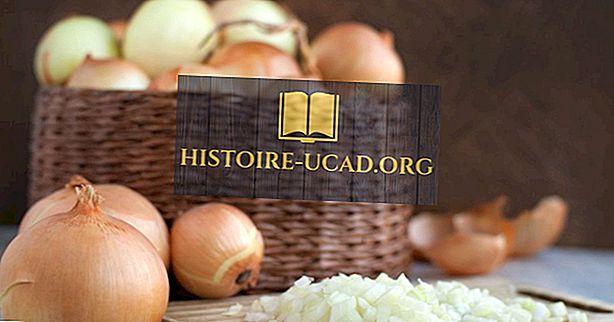 Най-добрите страни, произвеждащи лук в света