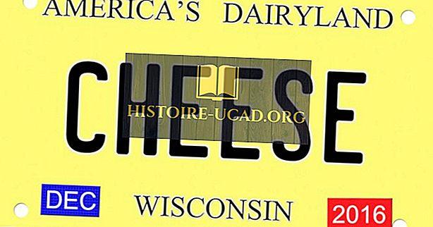 Οικονομικά - Παραγωγή τυριού στις ΗΠΑ ανά κράτος