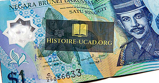 Яка валюта Бруней-Даруссалама?