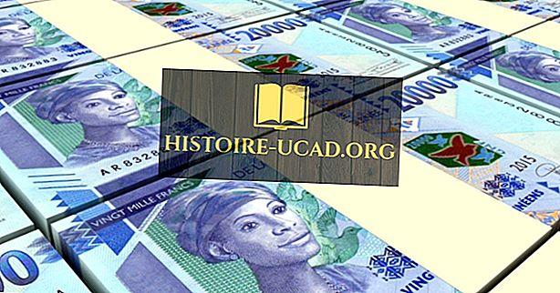 Kas yra Gvinėjos valiuta?