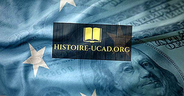 Quelle est la monnaie de la Micronésie?