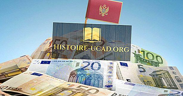 Kaj je valuta Črne gore?