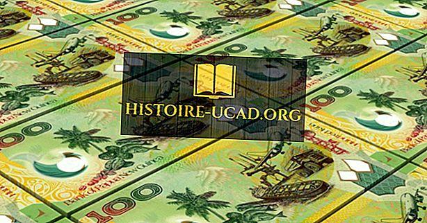 Mikä on Papua-Uusi-Guinean valuutta?