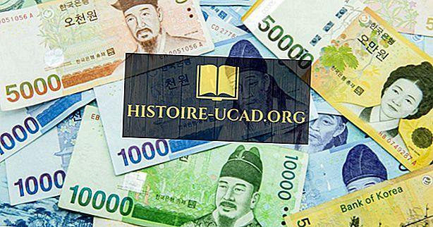 Kas yra Pietų Korėjos valiuta?
